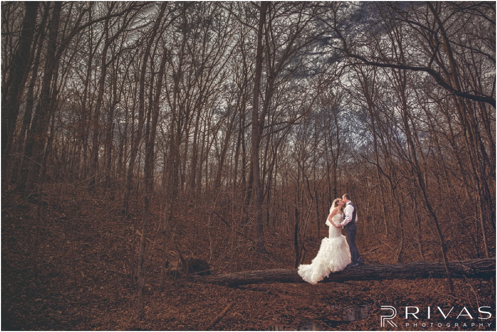 Lake of the Ozarks Elopement | A dramatic picture of a bride and groom standing on a log in the woods.