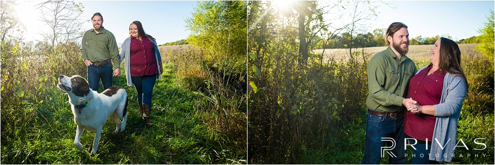 Family Farm Fall Engagement Session   Two photos of an engaged couple holding hands and walking through a field at sunset.