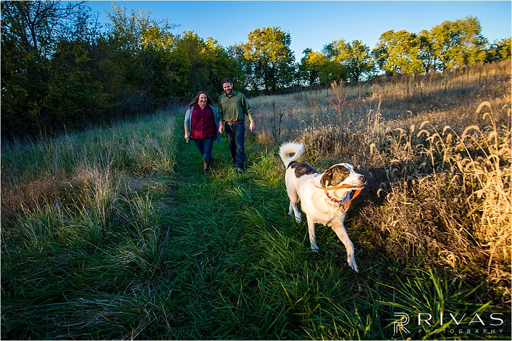 Family Farm Fall Engagement Session | A dramatic photo of an engaged couple holding hands and walking through a field of tall grass at sunset while their dog runs in front of them.
