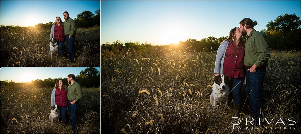 Family Farm Fall Engagement Session | Three picture of an engaged couple and their dog standing in a field of tall grass at sunset.