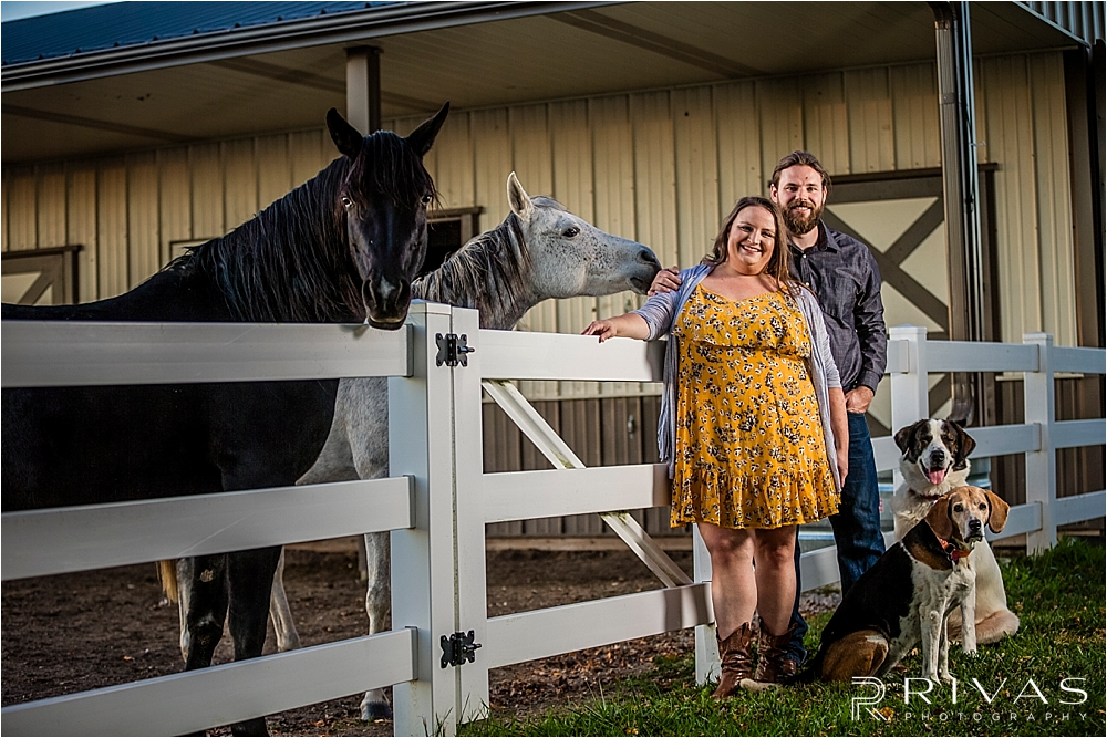Family Farm Fall Engagement Session | A candid portrait of an engaged couple standing against a white fence with their two dogs at their side, and two horses peeking over the fence.