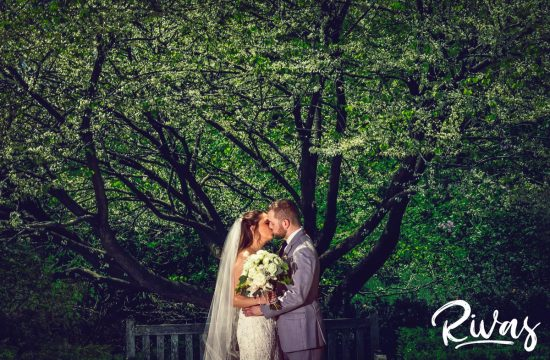 Loose Park Wedding Picture Sneak Peek | Kansas City Wedding Photographers | A photo of a bride and groom embracing and sharing a kiss while standing underneath a tree with white buds at Kansas City's Loose Park on their wedding day.