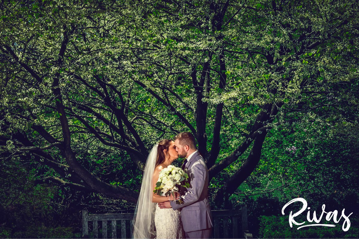 Loose Park Wedding Picture Sneak Peek   Kansas City Wedding Photographers   A photo of a bride and groom embracing and sharing a kiss while standing underneath a tree with white buds at Kansas City's Loose Park on their wedding day.