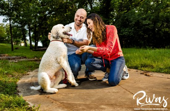 A candid picture of an engaged couple bending down to laugh and play with their dog during their vibrant summer session at Swope Park in Kansas City.