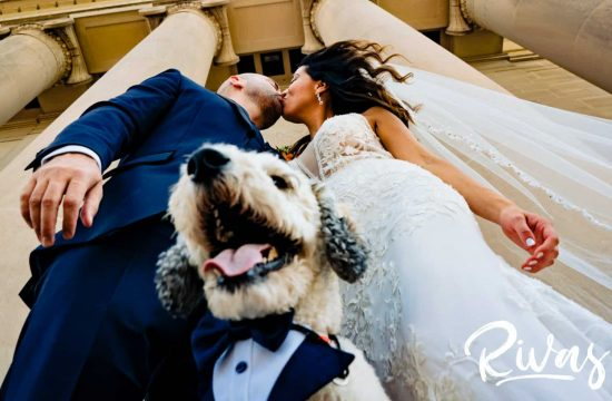 A candid portrait of a bride and groom leaning in to share a kiss as their dug in a tuxedo smiles at the camera.
