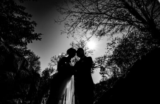 A black and white portrait, silhouette of a bride and groom leaning in to share a kiss in front of a canopy of silhouetted trees on a sunny winter wedding day at The Elms.